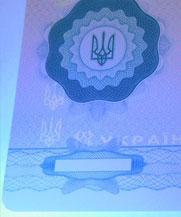 Диплом - свечение УФ (Николаев)